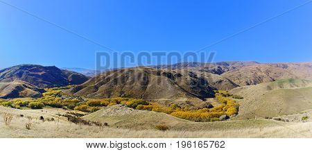 Panoramic image of Lindis Pass Scenic Reserve is the highest point on the South Island's state highway network of New Zealand offering mountain and tussock grassland scenery