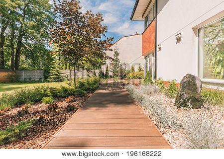 Planked Terrace In Sunny Backyard