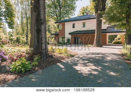 Family House On Sunny Day