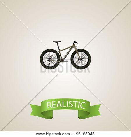 Realistic Extreme Biking Element. Vector Illustration Of Realistic Bmx Isolated On Clean Background