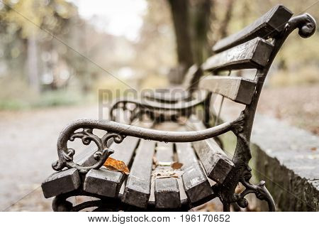 Park wooden bench in the autumn. Selective focus. Seasonal colors