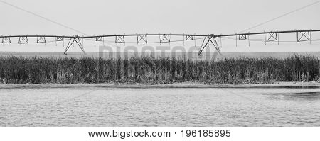 A monochrome landscape of a sprinkler in a field above a lake.