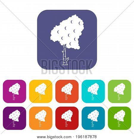 Birch icons set vector illustration in flat style in colors red, blue, green, and other