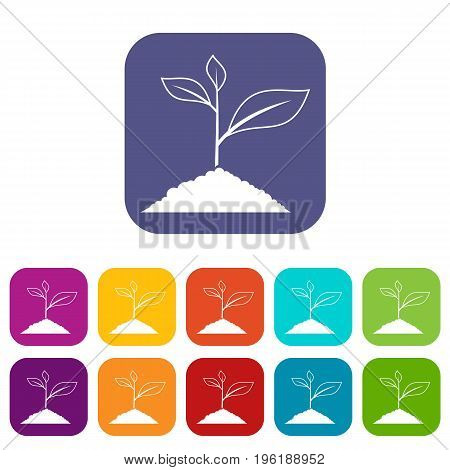 Growing plant icons set vector illustration in flat style in colors red, blue, green, and other