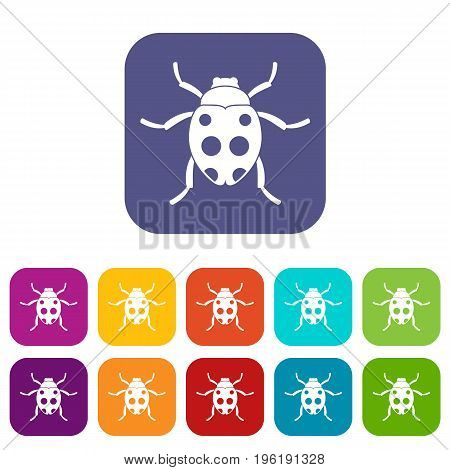 Ladybug icons set vector illustration in flat style in colors red, blue, green, and other
