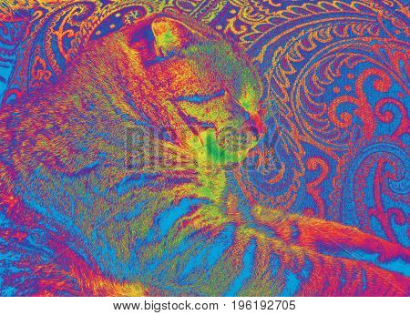 A colorful psychedelic sideview image of a Mackerel Tabby cat sitting down on a paisley chair.