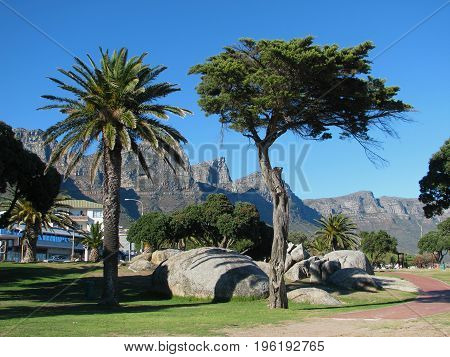 FROM CAMPS BAY, CAPE TOWN, SOUTH AFRICA, WITH BOULDERS AND TREES IN THE FORE GROUND AND A MOUNTAIN IN THE BACK GROUND