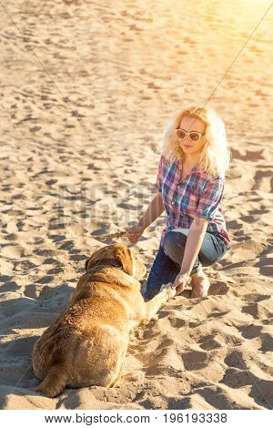 Dog training. A big funny dog labrador performs a command - lie down and waits for reward. A wonderful summer day on the beach. Young woman with a red labrador trains on the sand. Sun flare