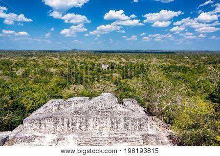 Beautiful Calakmul View
