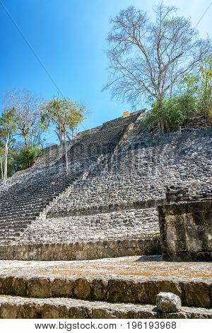 Structure One In Calakmul