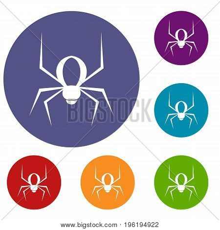 Spider icons set in flat circle red, blue and green color for web