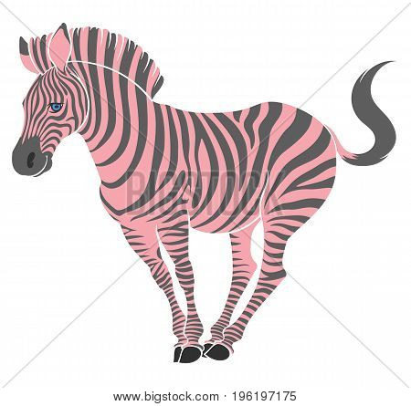 cute naturalistic zebra with pink stripes in funny pose  - line drawing hand-drawing sketch