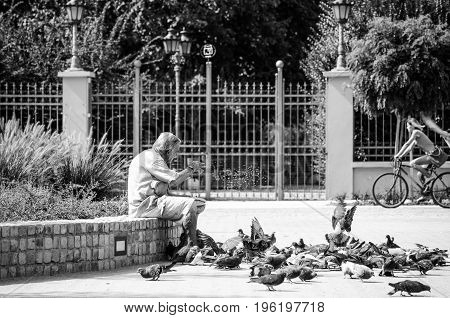 Homeless man feeding pigeons. Social documentary street. Black and white. September - 16. 2016. Novi Sad, Serbia. Editorial image.