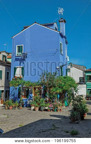 Overview of colorful terraced houses and bush flowers on sunny day in Burano, a gracious little town full of canals, near Venice. Located in the Veneto region, northern Italy