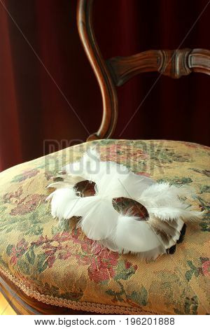 A white feather owl mask on the seat of an antique chair with a Damask multicolor flower pattern upholstery.
