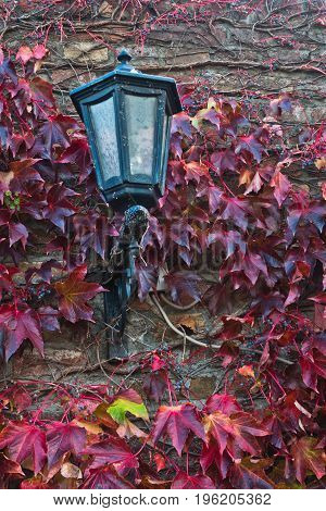 Old lantern on a fortress wall surrounded with red leaves in autumn at Kalemegdan, Belgrade, Serbia
