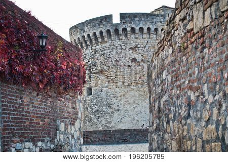Inside Kalemegdan fortress at autumn, towers and walls with red leaves, Kalemegdan, Belgrade, Serbia