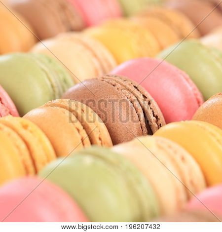 Macarons Macaroons Colorful Cookies Dessert From France Square