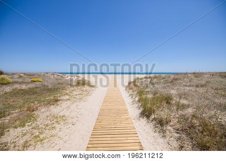Wooden Footway Access To Pine Beach In Castellon