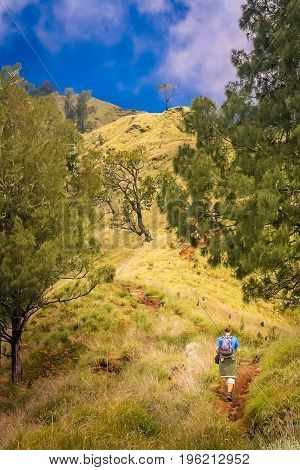 Girl walking up the path to the summit of Gunung Rinjani volcano in Lombok, Indonesia