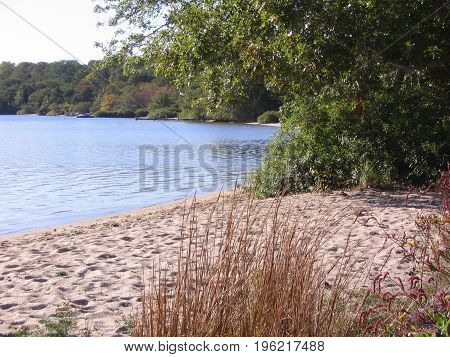 Sandy beach on pond along Cape Cod Rail Trail