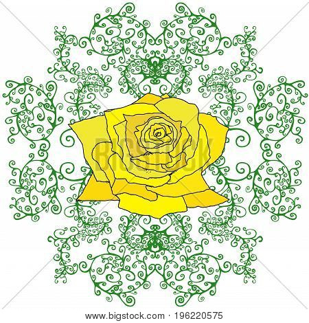 Yellow rose in branches foliage isolated white background. Floral background vector hand drawn. Illustration design art booktextile printposterdesign fabric.Color page for adults and children