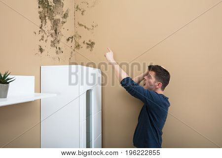 Shocked Young Man Pointing At Mold On Wall At Home