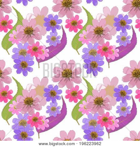 Cosmos. Texture of flowers. Seamless pattern for continuous replicate. Floral background photo collage for production of textile cotton fabric. For use in wallpaper covers
