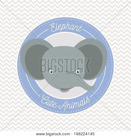 irregular lines background with color frame decorative and face elephant cute animals text vector illustration