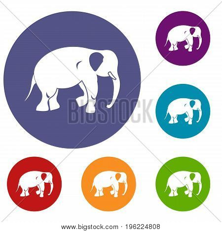 Elephant icons set in flat circle red, blue and green color for web