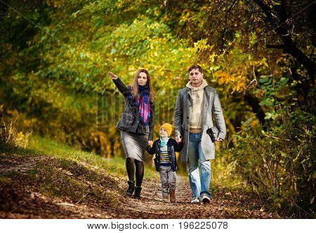 Young parents and their little son having walk in forest