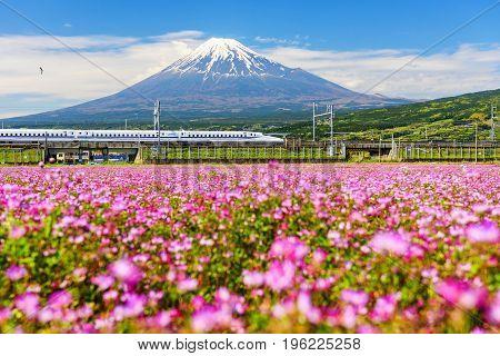 Shinkansen And Mt. Fujisan