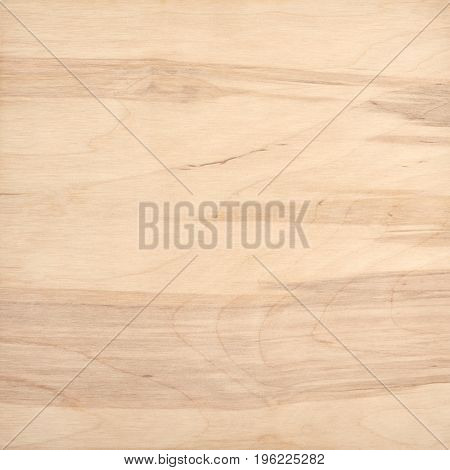 Close up of light brown wood surface texture background