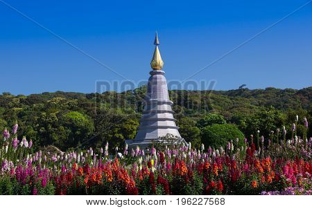 Pagoda with the garden at Doi Inthanon national park Chiang Mai Thailand