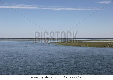 New Jersey ocean wetland coast wildness near Atlantic City, New Jersey