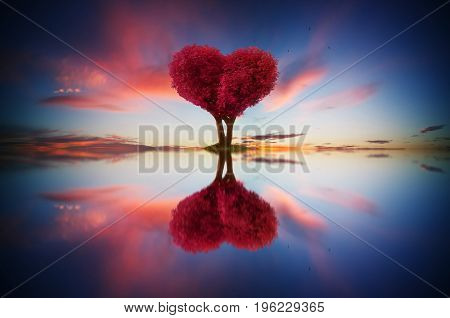 Abstract image of lonely red color leaf and love shape tree at sunrise scene with reflection in water.