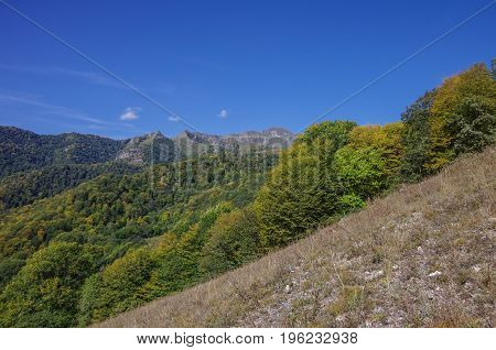 Panorama Forest And Rocks Of Dilijan National Park, Armenia