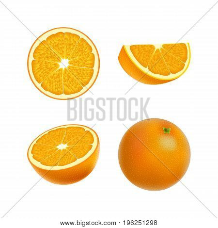 Set of isolated colored orange half slice circle and whole juicy fruit on white background. Realistic citrus collection