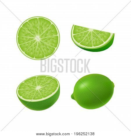 Set of isolated colored green lime half slice circle and whole juicy fruit on white background. Realistic citrus collection