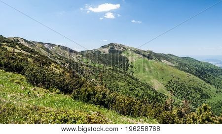Mala Fatra mountain range panorama with highest Velky Krivan hill from hiking trail between Hromove and Steny hills in Slovakia during nice day with blue sky and only few clouds