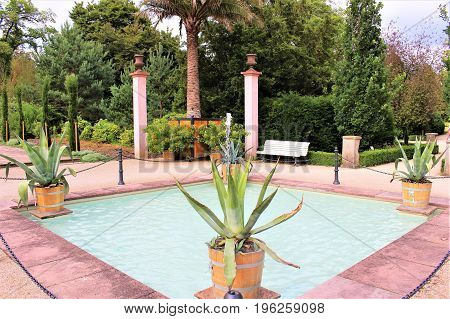 An image of a palm garden, Kurpark - Bad Pyrmont/Germany - 07/08/2017