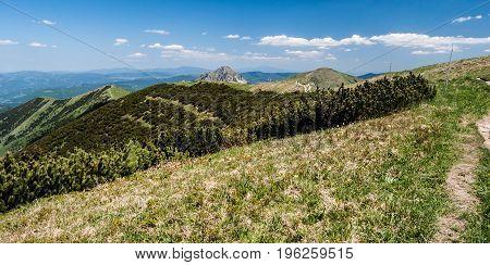 scenery of Mala Fatra mountains range with Velky Rozsutec Stoh Steny and Poludnovy grun hills in Slovakia with nice sky