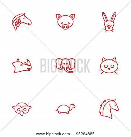 Set Of 9 Animal Outline Icons Set