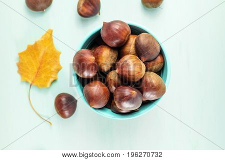 A photo of chestnuts, shot from above on a teal background with a vibrant autumn leaf and a place for text. Selective focus