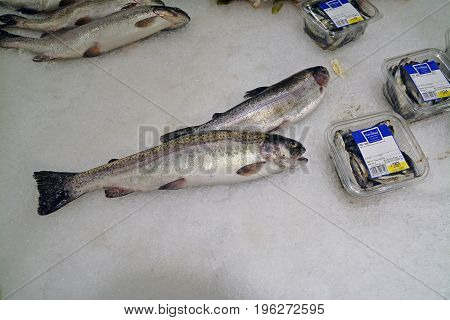 Timisoara Romania - July 20 2017: Trout fish at the Carrefour hypermarket. Shot taken on July 20th 2017