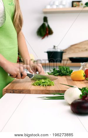 Close up of woman's hands cooking in the kitchen. Housewife slicing fresh salad. Vegetarian and healthily cooking concept.