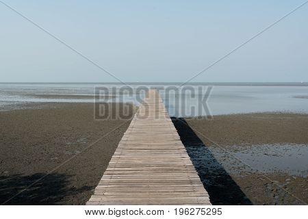 Wooden pier at wetlands in Samutsakorn Thailand.
