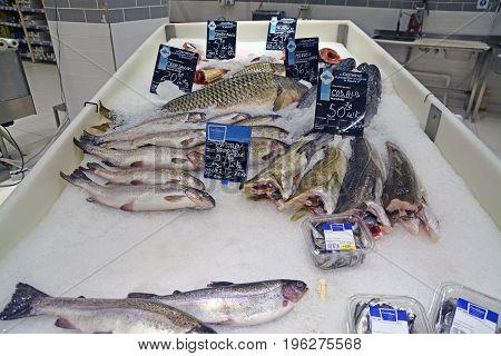 Timisoara Romania - July 20 2017: Frozen fish at the Carrefour hypermarket. Shot taken on July 20th 2017