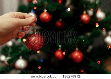 Decorating Christmas Tree At Home. Hand Holding Red Ball Ornament Close Up On Background Of Christma
