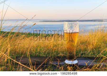 Glass of cold beer at sunset on the background of wheat field and blue sky. Summer landscape. Recreation and relax. Fresh brewed ale. Scenic sea view from top of hills.
